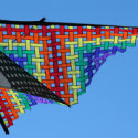 FLY WITH KITES